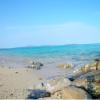 【沖縄に来るべき理由】大宜味村の根路銘海岸 自然からの贈り物をただ感じる時間