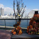 【神戸旅行】神戸滞在8日間 2017年10月【記事一覧】