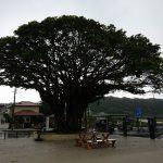 雨・雨・雨の沖縄4泊5日 記事一覧と振り返り Jul,2018