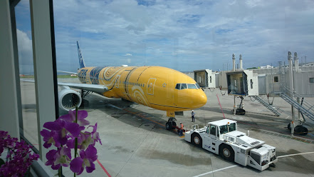 体調問題で再び沖縄に 2回目の沖縄移住を決意