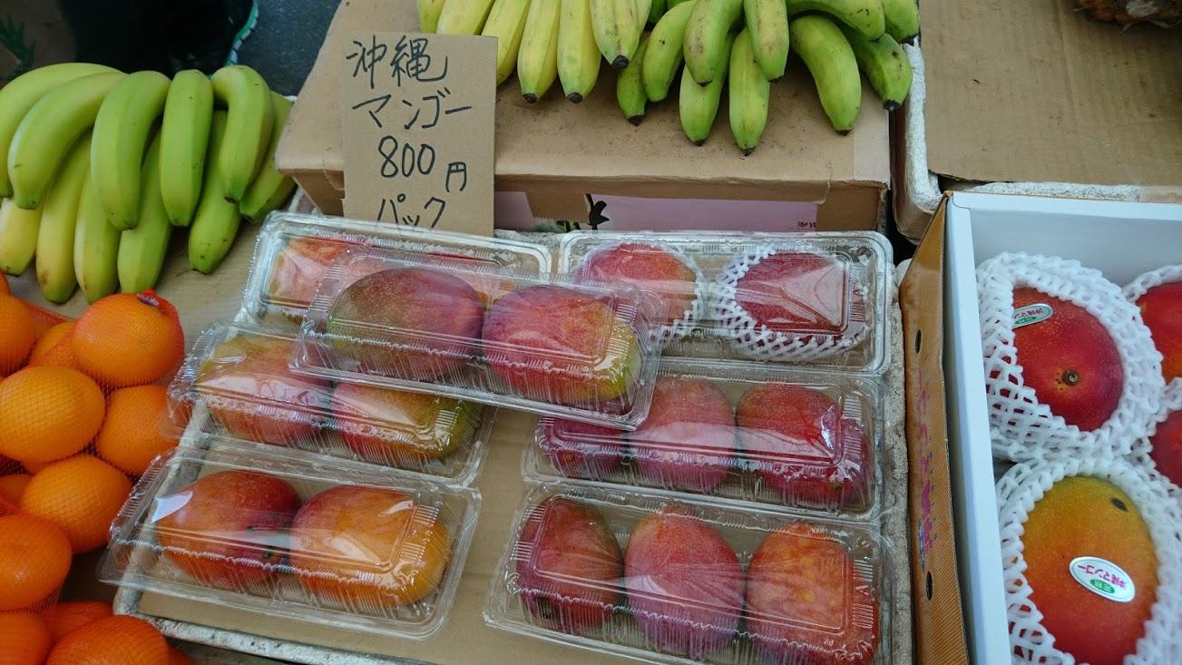 【沖縄県産マンゴー】自宅用のマンゴーでもいい!というあなたに お安くお得にマンゴーが買えるのはココ!