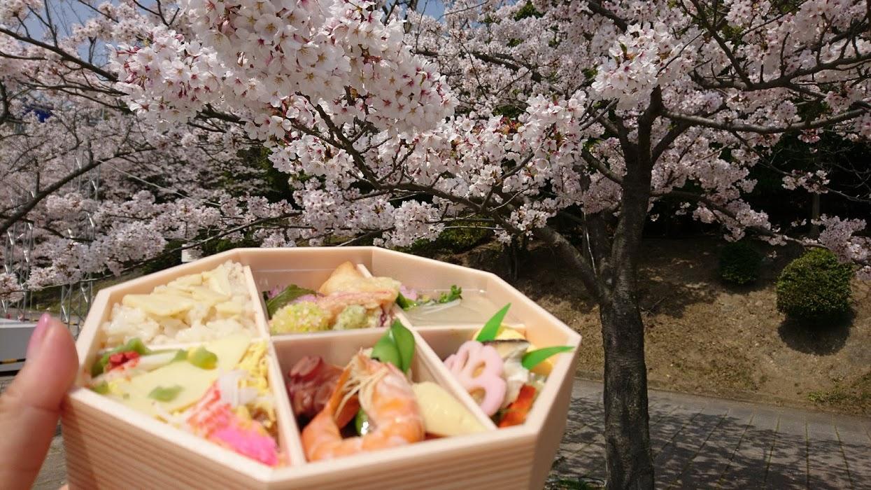 【神戸】須磨浦山上遊園でお花見&お花見弁当 海も桜も満喫してきましたよ 2018桜だより