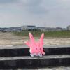 【ポケモンGO】沖縄でポケ活 地域限定ポケモン サニーゴが出現場所はここ! 観光しながらサニーゴをゲット